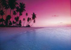 publishing-kaart-met-strand-met-palmen-roze-lucht-voorkant.jpg (350×249)