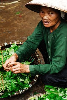 Vegetable seller, Vietnam Copyright by Andrew Tan JK.