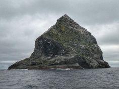 St. Kilda Seas - Stacks & Seabirds. Sheep Breeds, Sea Cliff, Outer Hebrides, St Kilda, Sea Birds, Atlantic Ocean, The St, Archipelago, Seas