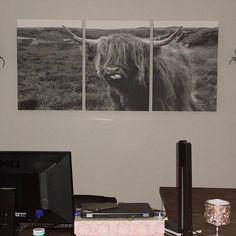 Minimalism Minimalist Art Print Marble Poster Wall Decor | Etsy Canvas Wall Art, Wall Art Prints, Canvas Prints, Modern Wall Paneling, Scottish Cow, Highland Cow Print, Minimalist Art, Poster Wall, Printing Services