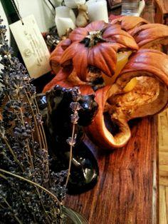 #pumpkin #autumn #champagne #levander #horse