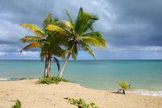 Bahia Principe El Portillo – SAMANA-------WOW! - Avis de voyageurs sur Grand Bahia Principe El Portillo, Las Terrenas - TripAdvisor