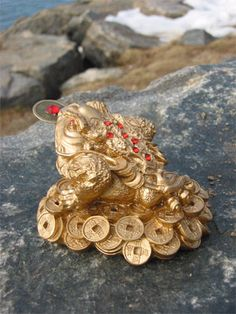 three legged toad with coins symbolize wealth