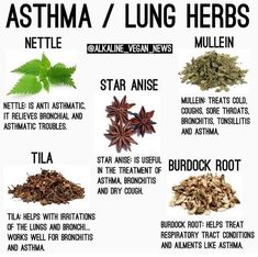 Awesome Home Remedies detail are offered on our website. Read more about natural home remedies. Healing Herbs, Medicinal Herbs, Holistic Healing, Natural Health Remedies, Herbal Remedies, Asthma Remedies, Natural Medicine, Herbal Medicine, Homeopathic Medicine