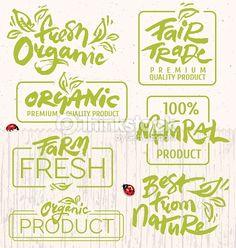 Vector Art : Organic Food