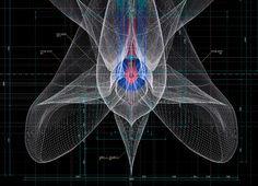 10 | Fantastically Complex Blueprints Of Plants | Co.Design | business + design