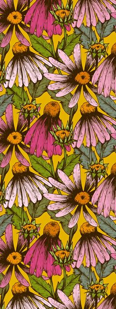 #wallpaper with #daisys