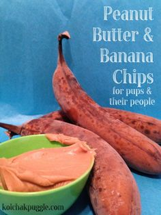 This oven baked or dehydrator dog treat recipe can help you use up brown bananas. Try our peanut butter & banana chips for dogs.