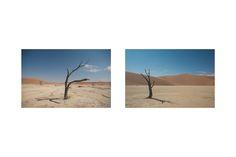 dead vlei  - softblur photography Photography Portfolio, Cape Town, Wind Turbine, Storytelling, Road Trip, Portrait, Wedding, Travel, Valentines Day Weddings