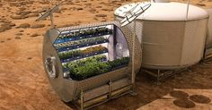 Growing vegetables and cereals in space could become critical to eventually supporting a permanent human colony on Mars.