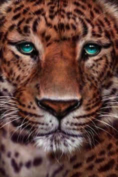 ✯ Chinese Panther :: Artist Giselle Ukardi ✯