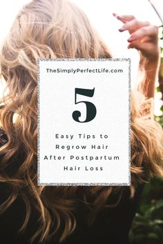 Postpartum Hair Loss happens to everyone!  But it can effect some new mommas worse than others.  Here are the 5 easy tips I used to Regrow hair after postpartum hair loss.  Trust me, they really worked! #postpartumhairloss #postpartum #newmomtips #hairloss #hairgrowth #affiliate Beauty Secrets, Beauty Hacks, Curly Hair Styles, Natural Hair Styles, Postpartum Hair Loss, Breastfeeding Tops, Beauty Zone, Regrow Hair, Photo Makeup