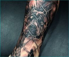 25 Awesome Pitbull Tattoo Snouts Meanings and Designs