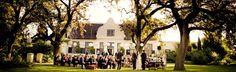 cape-wineland-wedding-celebration
