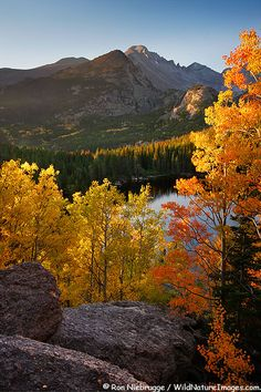 'Bear Lake, Rocky Mountain National Park, Colorado, in the Fall' - photo by Ron Niebrugge