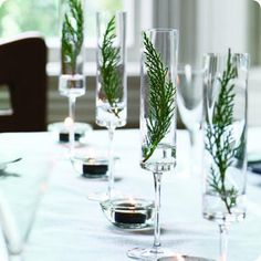 Float evergreen springs in champagne flutes for a simple yet stunning display.