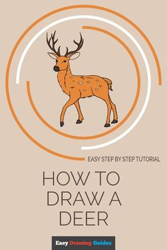 Drawing Tutorials For Kids, Art Tutorials, Warm And Cold Colours, Smelly Dog, Deer Drawing, Directed Drawing, Easy Crafts To Make, Boy Illustration, Step By Step Drawing