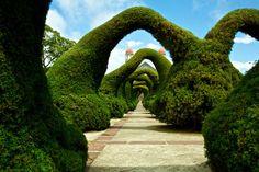 Parque Francisco Alvarado – Zarcero, Costa Rica - Atlas Obscura