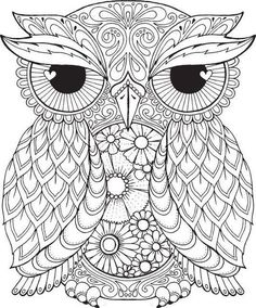 Image result for owl colouring pages for adults