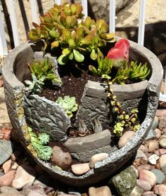 Broken pot garden -- Succulents, shards and stones Broken Pot Garden, Garden Junk, Garden Pots, Garden Ideas, Flower Pot Art, Clay Flower Pots, Succulent Pots, Planting Succulents, Suculentas Diy