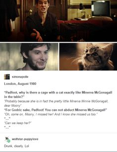 Mauraders - In which Sirius kidnaps McGonagall :)