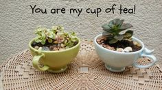 Teacher Appreciation Gifts and Printables - Thanks for helping me grow