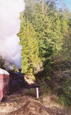 Skunk Train - Mendocino  My Mom Reta Phelps always wanted to drive a train and blow the whistle...they let her.