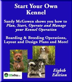 Start Your Own Dog Kennel!