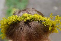 #tutorial #coronita de pus pe cap din #flori #sanzaiene galbene #dragaica #sarbatoare sanzaiene