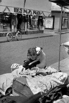 Todos los hombres son dioses para su perro. Por eso hay gente que ama más a sus perros que a los hombres.  Aldous Huxley(1894-1963) Novelista, ensayista y poeta inglés.