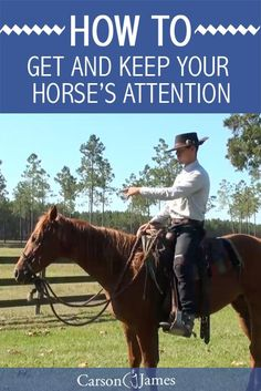 When training horses (or just simply riding horses) it's always important that you keep their attention and focus. In this horse training tip you'll learn how to get and keep your horse's attention.