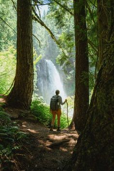 There are so many waterfalls in Oregon to explore, there's one to see no matter where you travel in the state! We're sharing the most famous Oregon waterfalls here, with tips, maps, and downloadable bucket lists to print too! #oregon #PNW #oregonstate #PacificNorthwest #portland #waterfalls Oregon Coast Hikes, Oregon Road Trip, Oregon Travel, Oregon Hiking, Famous Waterfalls, Oregon Waterfalls, Beautiful Waterfalls, Forest Waterfall, Waterfall Hikes