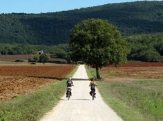 Via Francigena - Walking or cycling, it is one of the most appreciated itineraries by travelers who love sports and nature