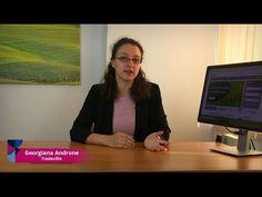 Ponturi Tranzacții Forex - CFD - Indici - actiuni - Aur- Petrol- Valute: Pont Bursier - De ce contează dividendele?