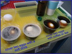 Two Toothy Eggsperiments - how drinks change the color of our teeth