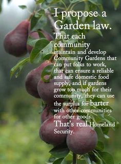 Propose a Garden Law for Communities - Maybe not a law, but I do like the idea of this.