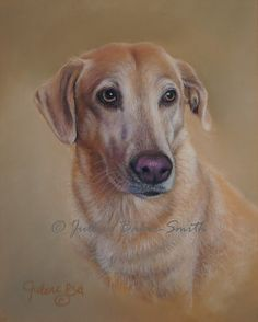 Golden Lab Original Pastel Painting Custom Pet by ArtByJulene, $150.00