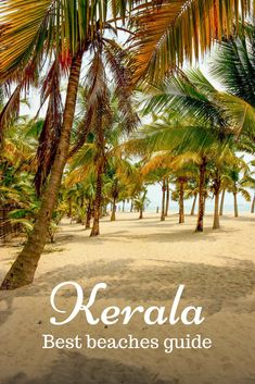 Top beaches to visit in Kerala, what they are famous for and where they are. Kerala beaches suitable for swimming, sunbathing, parties, calm retreat. reiseziele Best beaches in Kerala and which should you choose Goa Travel, Kerala Travel, India Travel Guide, Travel Destinations Beach, Nightlife Travel, Places To Travel, Vacation Travel, Africa Destinations, Kerala Tourism
