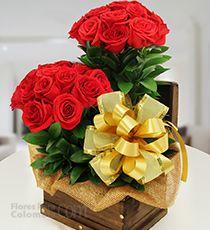Las 40 Mejores Imágenes De Flores Para Enamorar En 2015