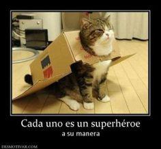 SUPERCAT!!!