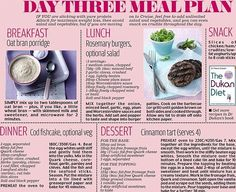 Diet Meal Plans Dukan Diet - not sure why, but I like reading up on all the different diets out there! - It's Day 3 of our Dukan Holiday Diet - and time to ease into a whole new way of eating Dukan Diet Meal Plan, Dukan Diet Recipes, Diet Meal Plans, Paleo Diet, Diet Foods, Snack Recipes, Keto, Protein Diets, No Carb Diets