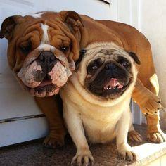 Lots of wrinkles here!
