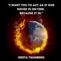 Thunberg book review Climate Change Quotes, Best Speakers, What The World, Problem And Solution, Beautiful Words, Book Review, Things I Want, This Book, Books