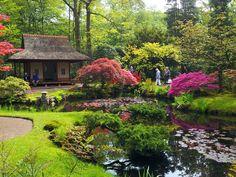..Clingendael Park Japanese Garden