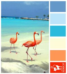 Flamingo Beach - Blue, Tiffany, Pastel, White, sand, Orange, flame, Pink - Designcat Colour Inspiration Board