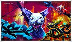 CAT + GRAFFITI, MONTREAL