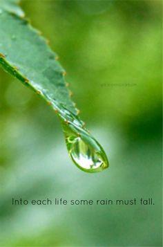 42 Best Raindrops Images Rain Drops Thoughts I Love Rain