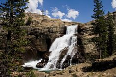 Hiked the Glen Aulin Trail to Tuolumne Falls in Yosemite