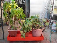 Jardinera de pallets para maceteros grandes. Planter Pots, Window Boxes, Furniture, Blue Prints