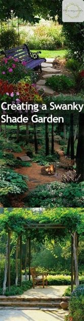 Nothing is more impressive than a shade garden full of lush greens and statement plants. And nothing is more pleasant on a hot summer day than sitting in the shade of your own garden. If you're…MoreMore #GardeningTips